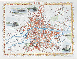 Antique Map of Cork by rapkin and tallis for sale