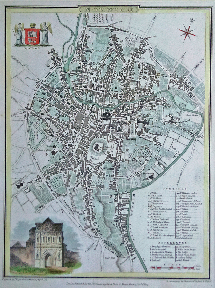 Antique town plan of Norwich for sale