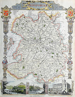Antique map of Shropshire for sale by Thomas Moule